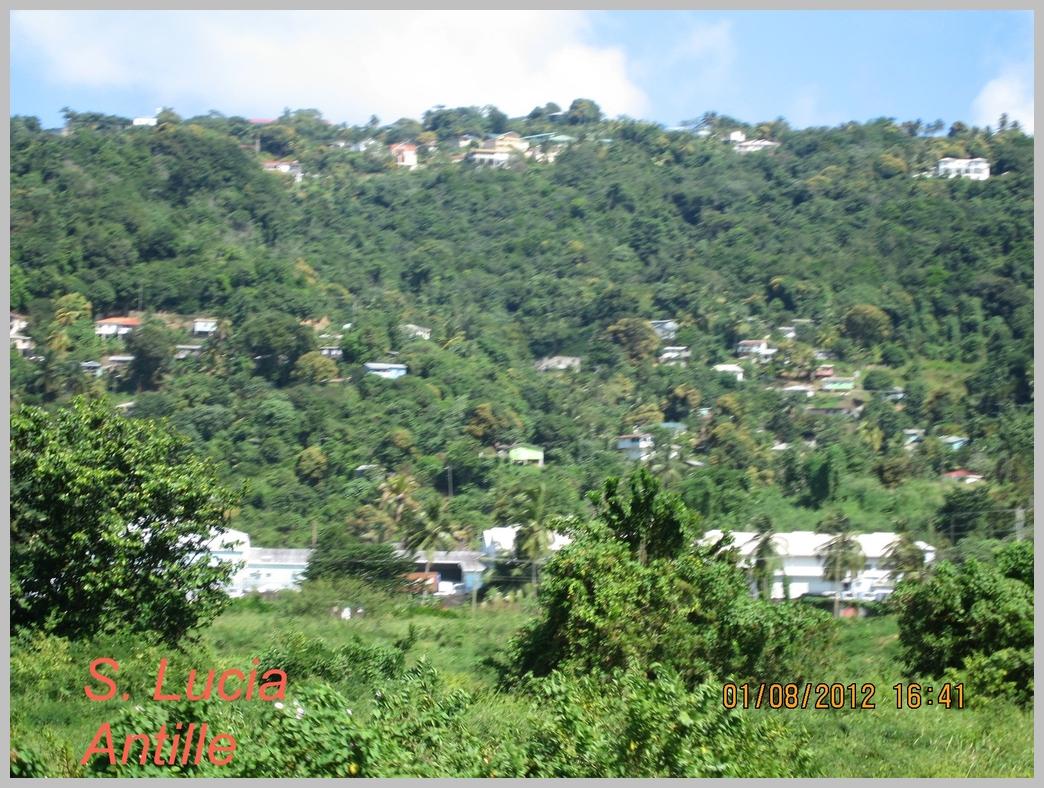 Antille-019