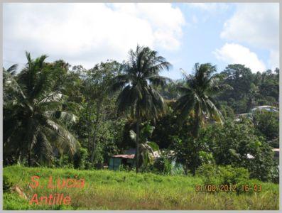 Antille-022