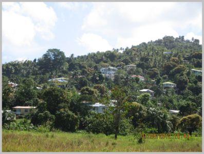 Antille-023