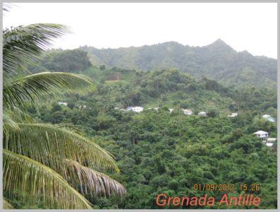Antille-099