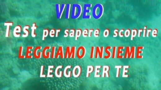 VIDEO 2